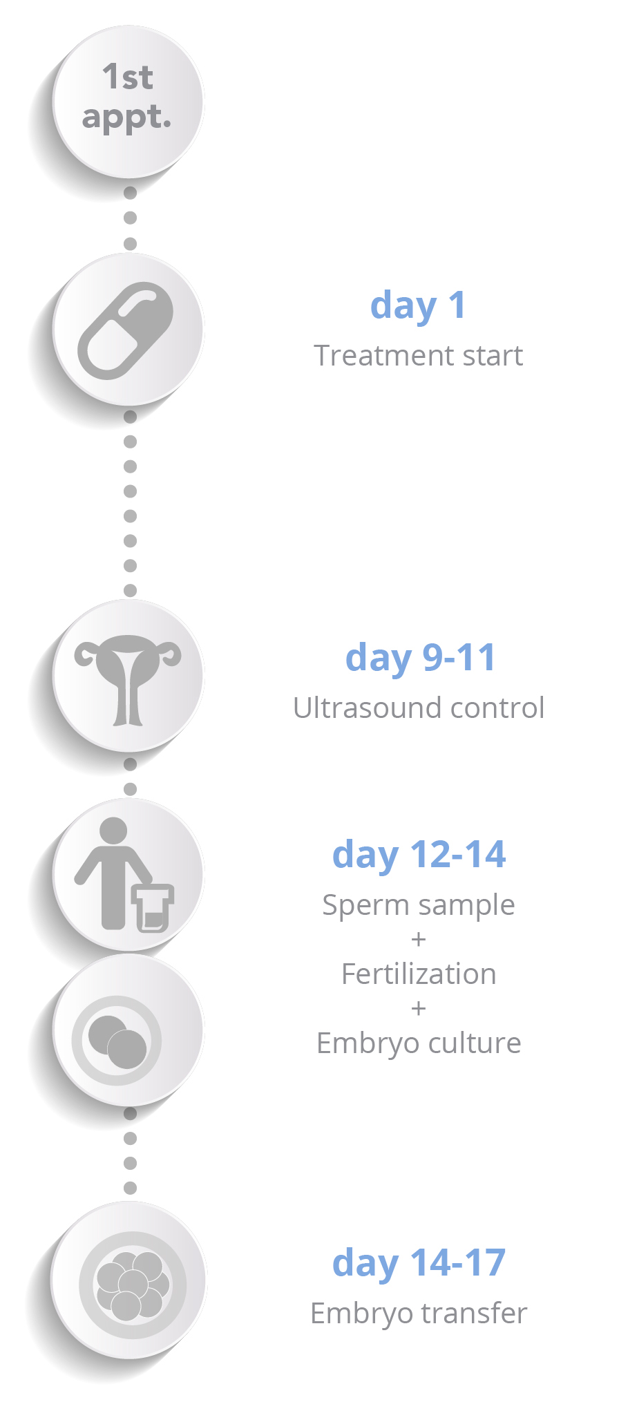 Egg donation - Vertical schema