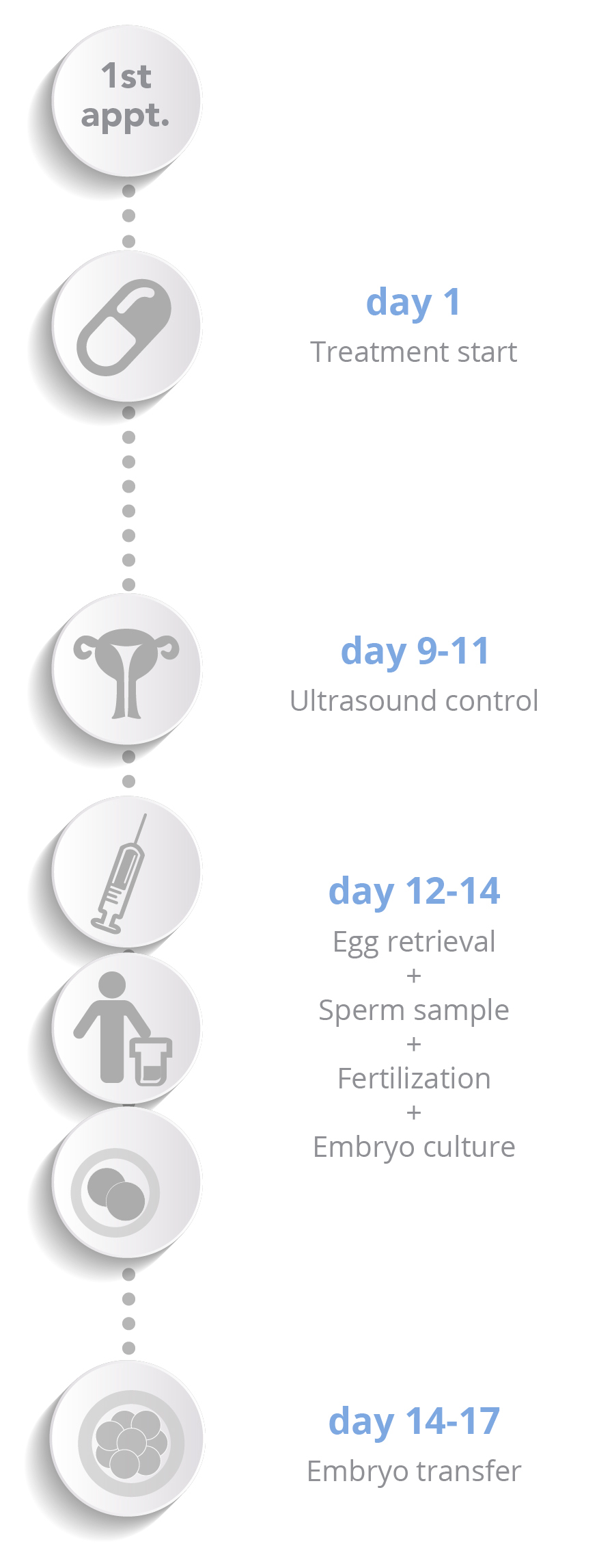 In vitro fertilisation - Schema verticale