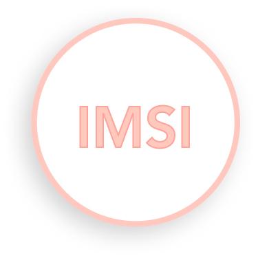 IMSI/SUPERICSI