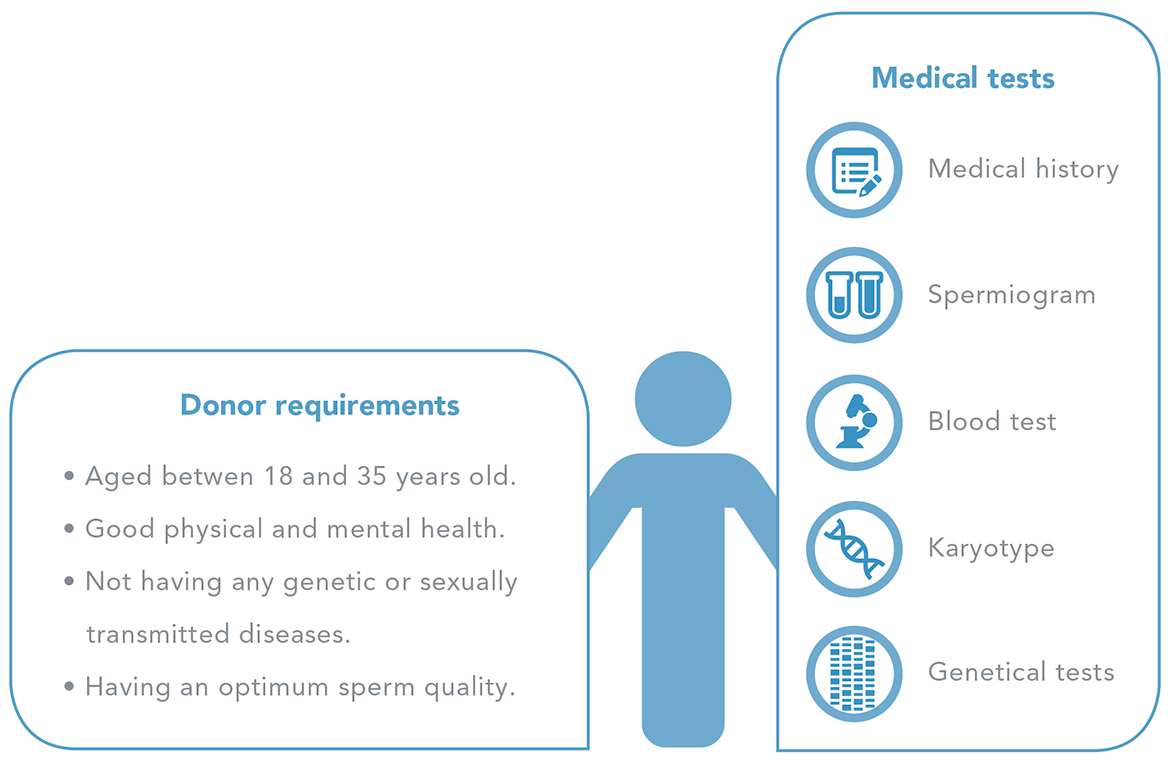 Donor selection and performed tests - Men